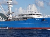 IMO Decisions to Enhance the Blue Economy